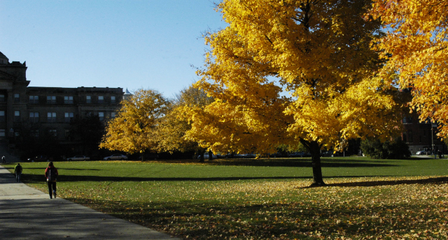Fall at ISU