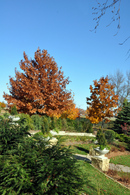 Fall in the Formal Lawn Garden at Reiman Gardens