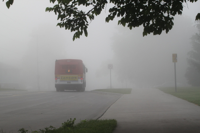 Foggy day with Cyride