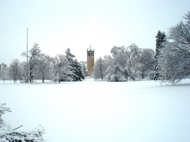 Wintry Campus