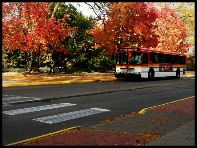 CyRide in Fall