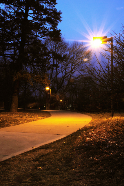 Night Path