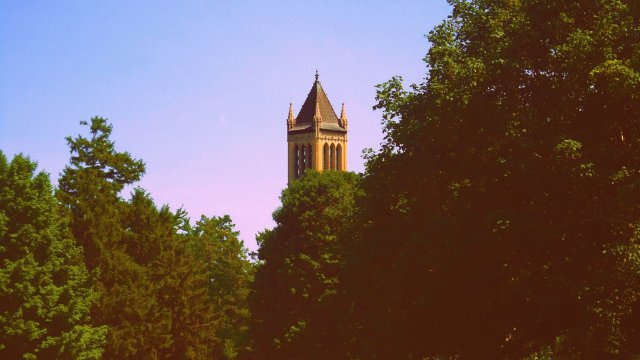 Campanile, hidden by trees