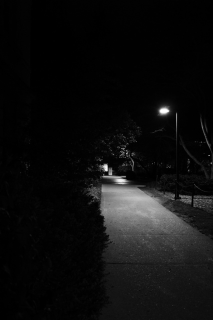 Midnight Walk