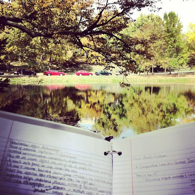 Studying and Relaxing