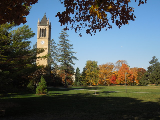 Autumn Morning on Campus