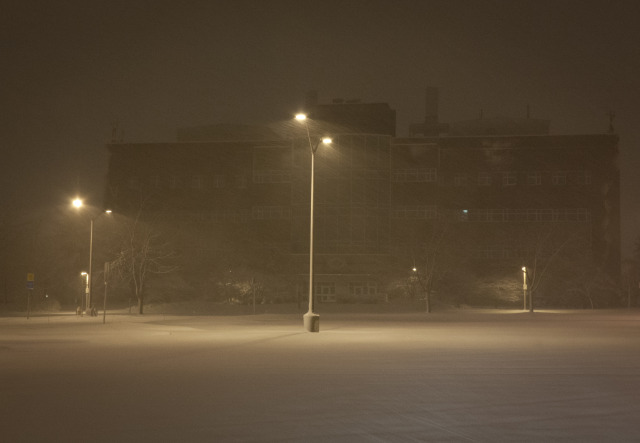 Snowy Night at Molecular Biology