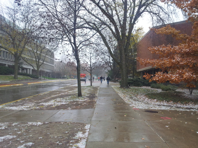 Season's first snow fall
