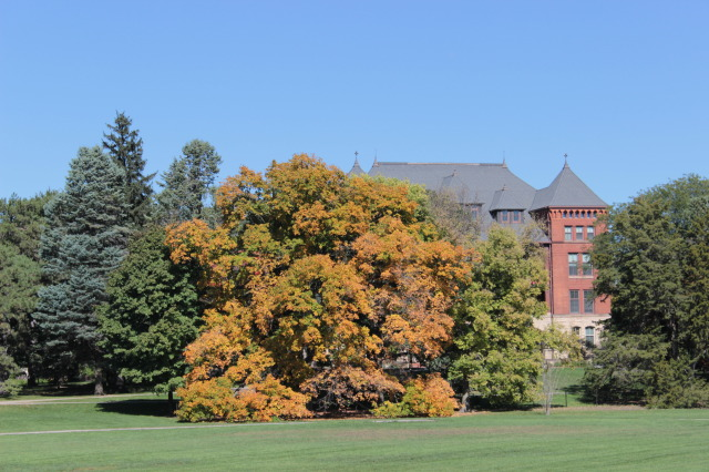 Beautiful Fall day on the ISU campus