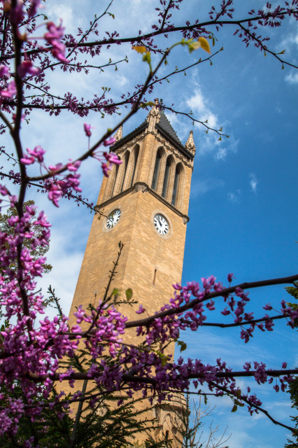 The Campanile during early spring