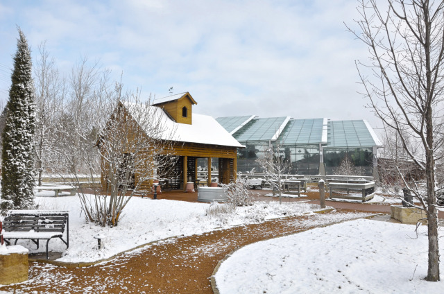 Children's Garden at Reiman Gardens in the winter