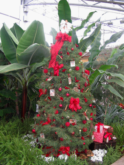 Holiday Show in the Hughes Conservatory at Reiman Gardens