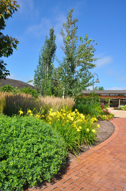 Events Plaza at Reiman Gardens in the summer