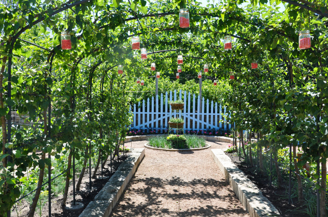 Home Production Garden at Reiman Gardens in the summer