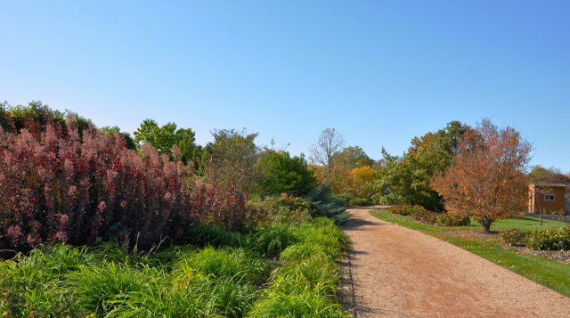 North Mixed Border at Reiman Gardens in the fall