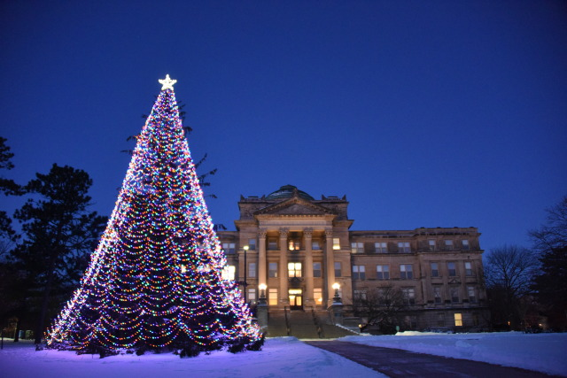 Holiday Tree Lights Up Beardshear