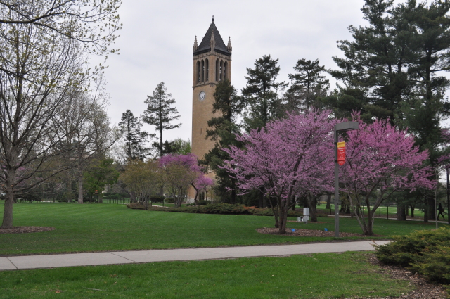 The Spring Campanile