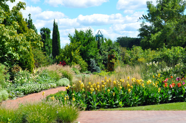 South Field at Reiman Gardens