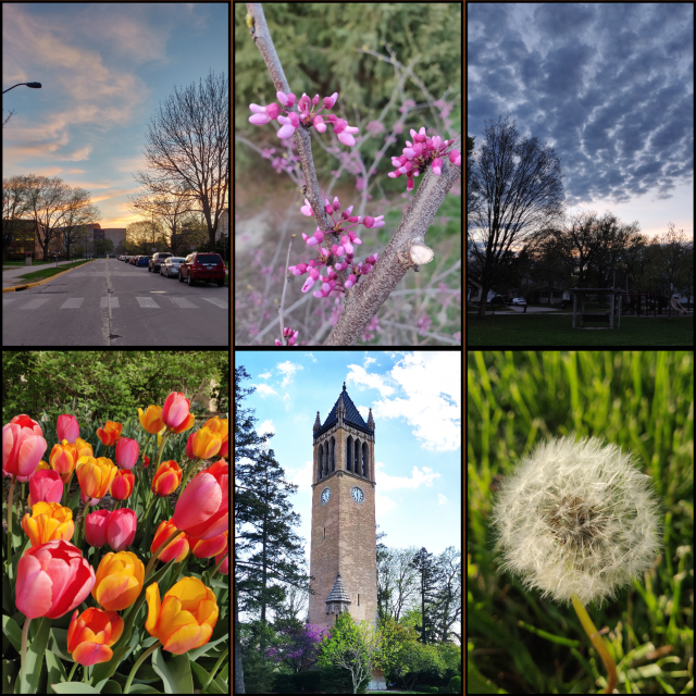 ISU -Colors of Spring