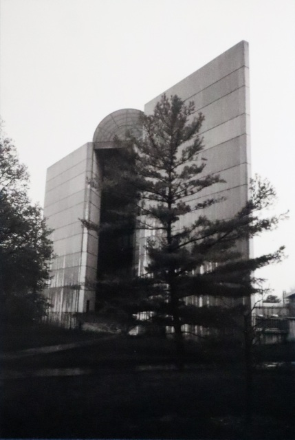 Design Building on Film